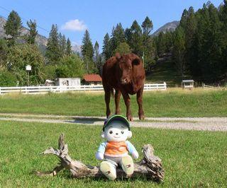 牧場で・・・